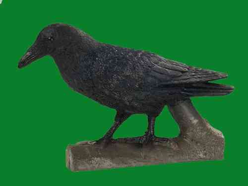 Raven - Group 4