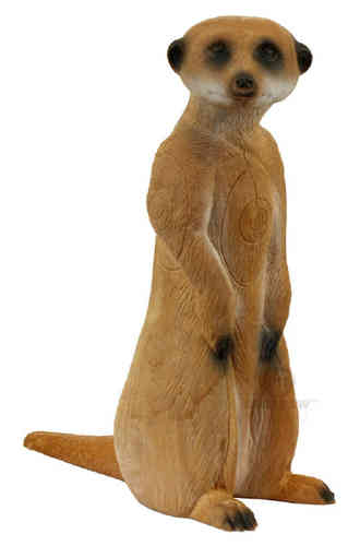 Standing Meercat/Longlife - Group 4